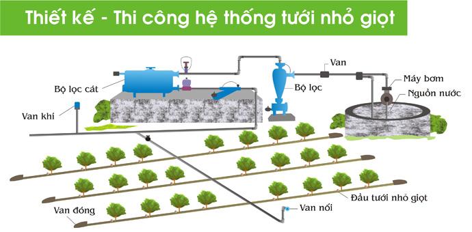 Hiệu quả sử dụng hệ thống tưới nước nhỏ giọt cho cây tiêu 2