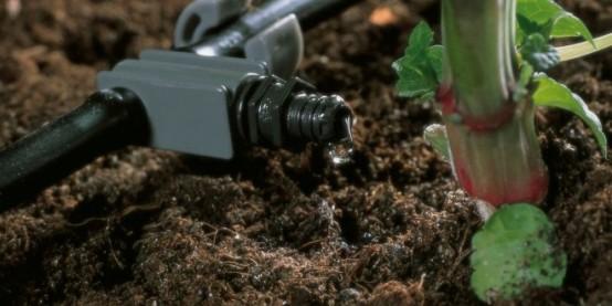 Nguyên lý cung cấp nước khoa học của hệ thống tưới nhỏ giọt 3