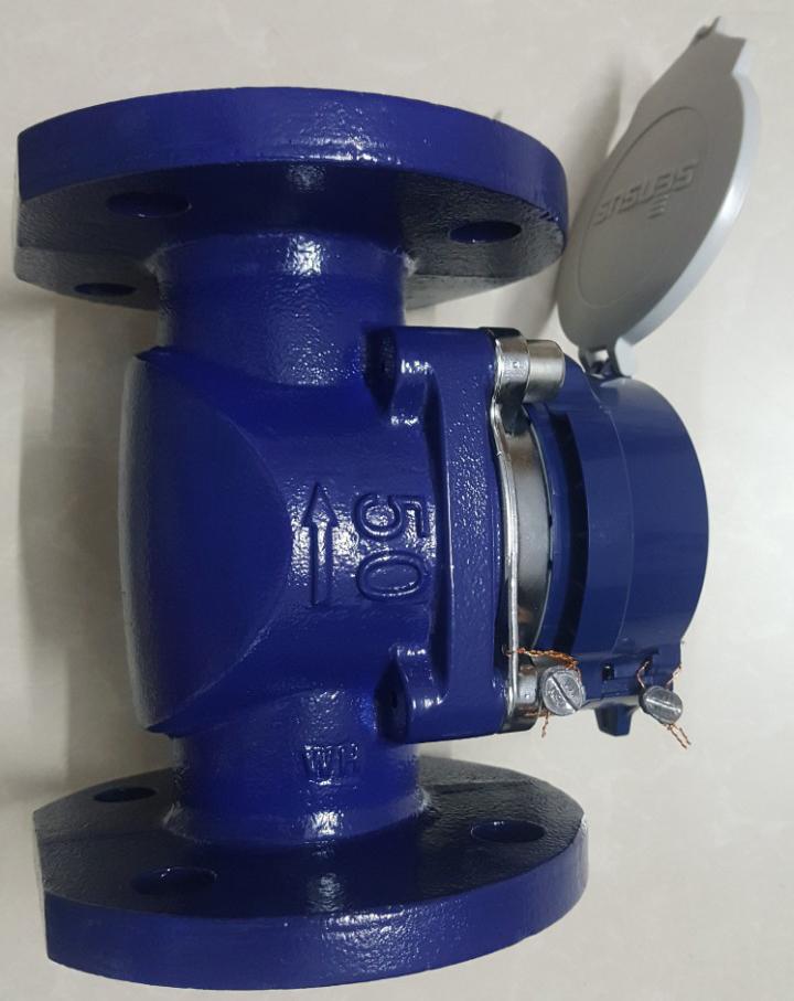 đồng hồ đo nước Sensus