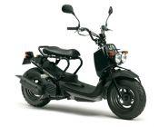 Honda Zoomer 50cc ( Màu đen )