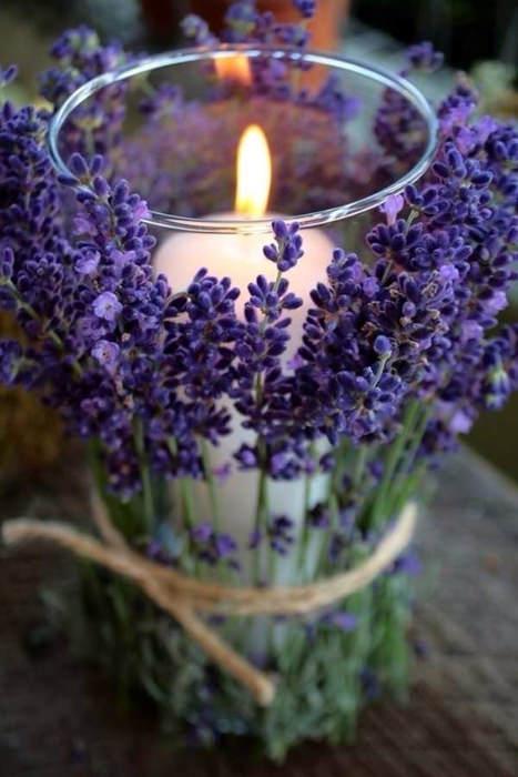 nến hương lavender
