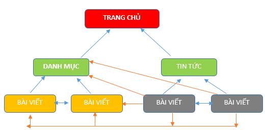 Mô hình và cấu trúc website